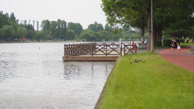 三郷公園内の池
